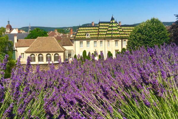 Chateau de Beaune Burgundy