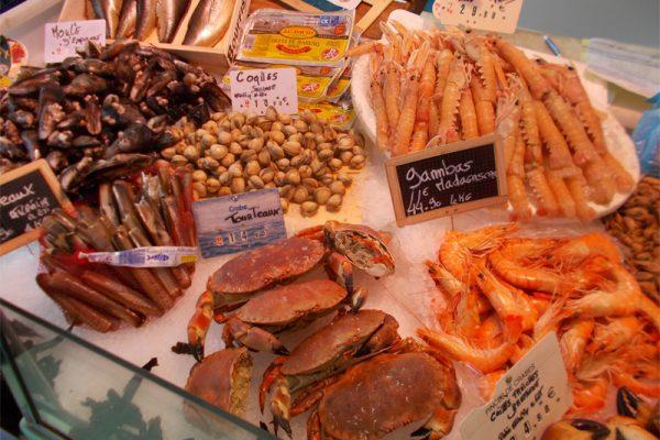 Shell Fish Market