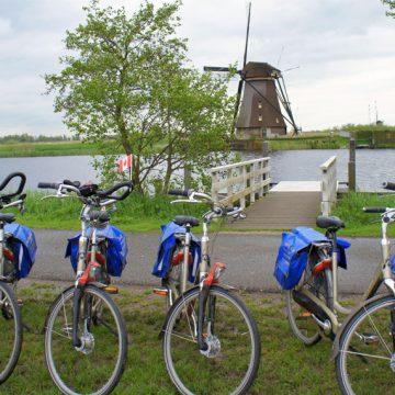 Panache - Bikes