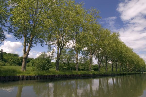 Renaissance Scenery Canal