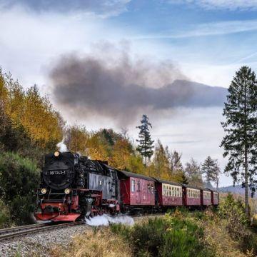 Multi Generational Cruises - Steam Train