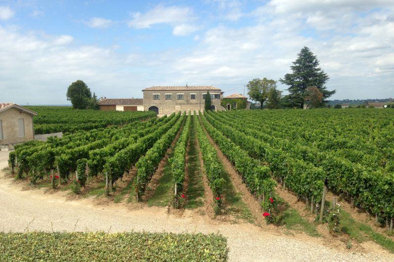 Saint-Émilion Vineyards in Bordeaux