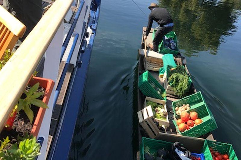 vegboat