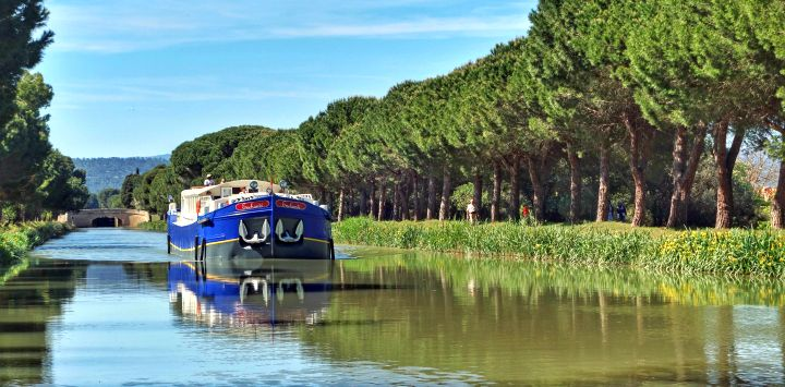 Enchante Tree Lined Canal