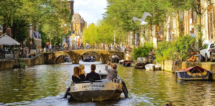 Top things to do in Holland