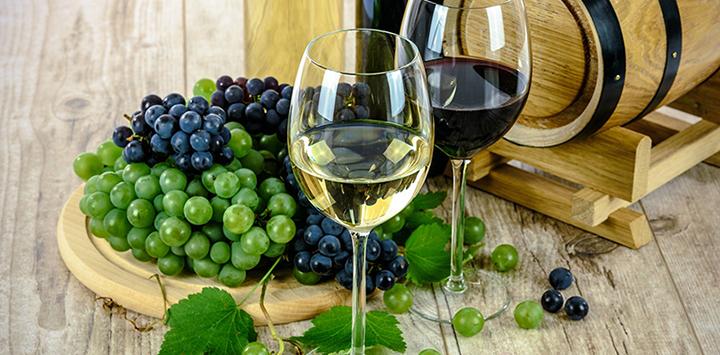 Wines of Gascony