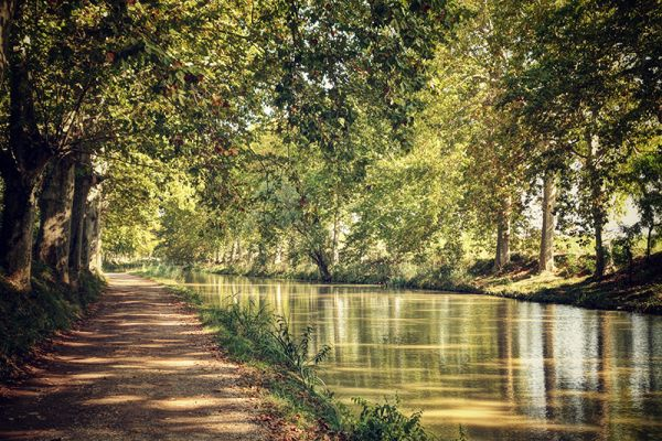 Verdant green trees bow over the world-famous Canal du Midi in Southern France