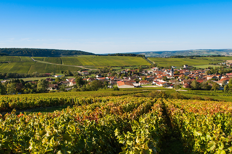 Champagne's rolling vineyards - a UNESCO World Heritage site and a wonder to behold