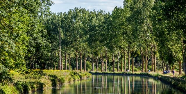 The verdant trees that surround the calm waters of the Burgundy Canal