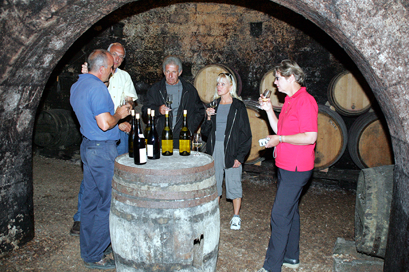Guests enjoying a wine tasting excursion in Burgundy, France