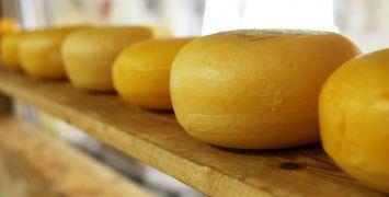 cheese-2785_1920 (1)