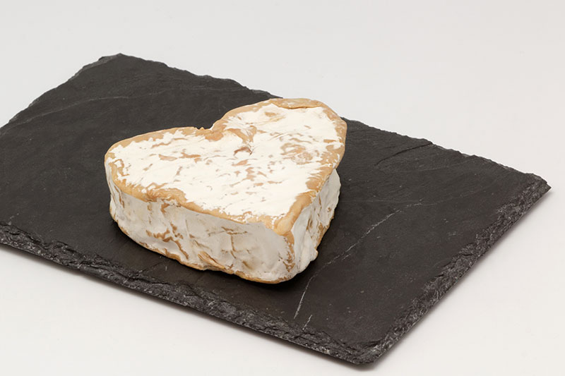French soft cheese Neufchâtel cheese