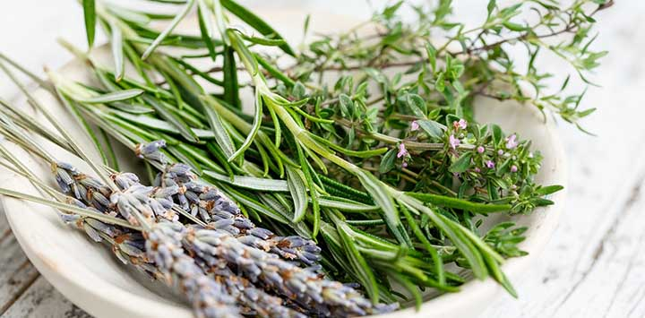 french-herbs-lavender-rosemary-pixabay-feat