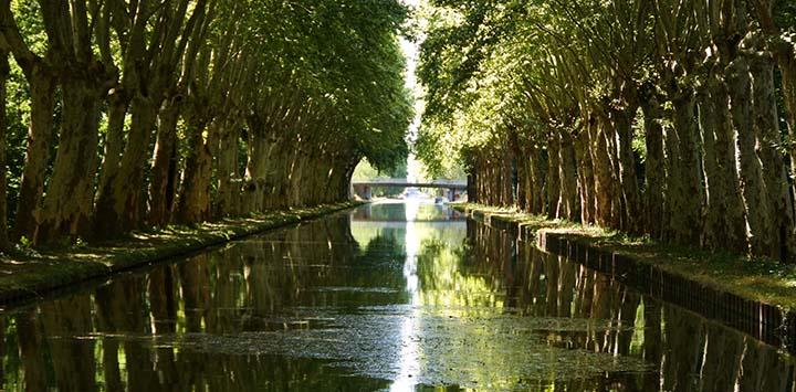 alsace-lorraine-canal-panache-mrs-darling-feat