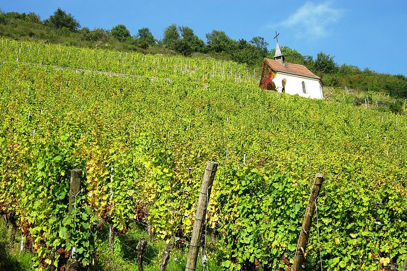 Châteauneuf-du-Pape is from the Rhône Valley wine region
